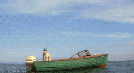 jaws sailboat jaws 2 gifs find share on giphy
