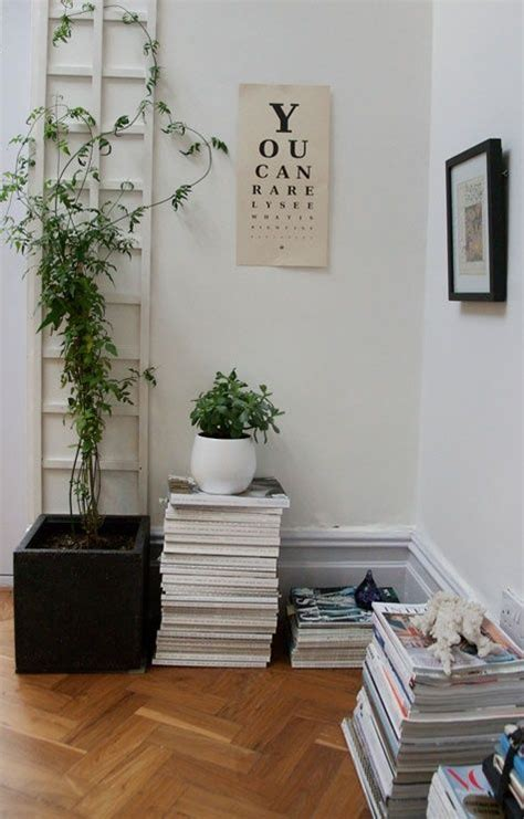 indoor vine 25 best ideas about jasmine plant on pinterest jasmine