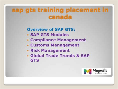 sap gts tutorial sap gts training placement in canada