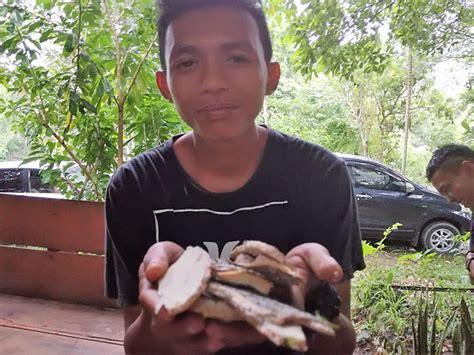 kearifan lokal pengelolaan hutan  pengobatan