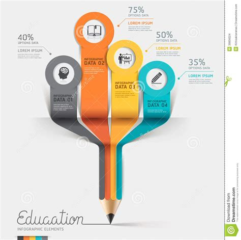 ed diagrams education pencil infographics step option stock vector