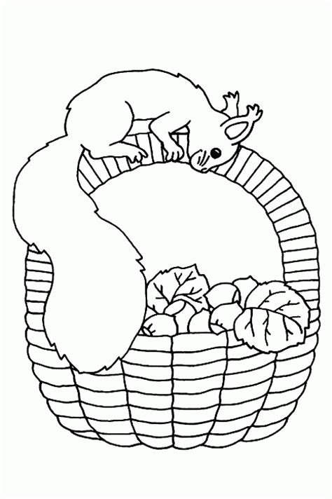 squirrel face coloring page squirrel coloring pages