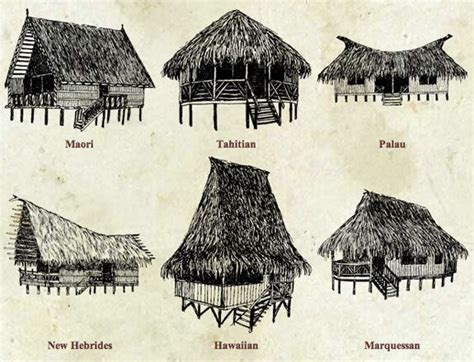 tiki hut drawing hawaii tiny tree house