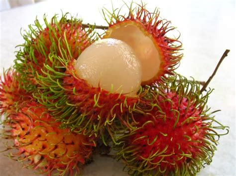 lychee fruit inside what s the difference between rambutan and lychee