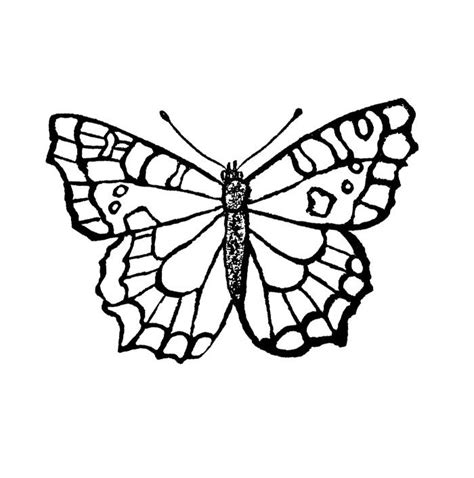 butterfly coloring pages pinterest old and vicious butterfly coloring page kids coloring