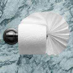Fancy Toilet Paper Folding - cornucopia in quot toilet paper origami on a