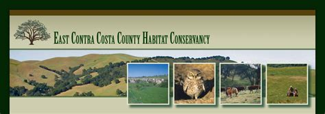 section 8 housing contra costa county contra costa county housing authority