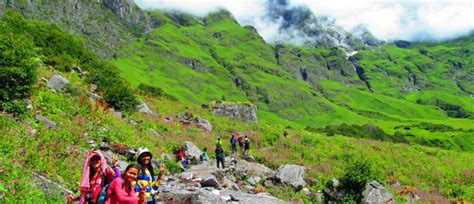 valley of flowers trek valley of flower trekking 2017 valley of flowers trekking valley of flowers trek tour
