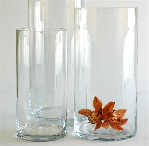 cylindrical glass vase the floral decorator