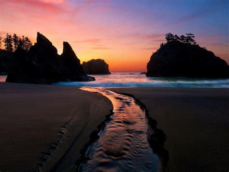 sunset lanskap alam pohon pasir batu sungai warna pantai