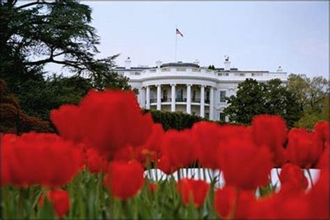 white house florist from showers to flowers spring at the white house
