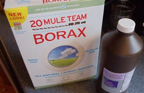 is borax safe for dogs comin home need a home remedy for mange this one really works bonus pet