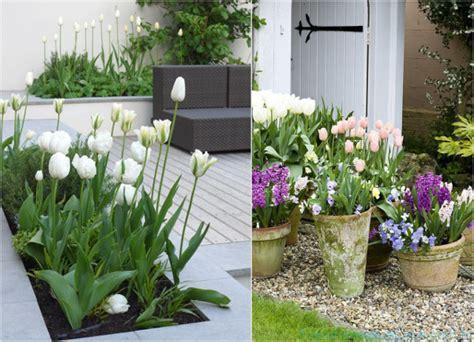 como decorar jardim pequeno jardim externo como decorar