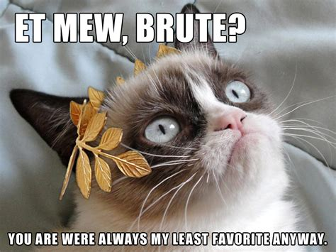 Original Grumpy Cat Meme - grumpy cat ides of march grumpy cat know your meme