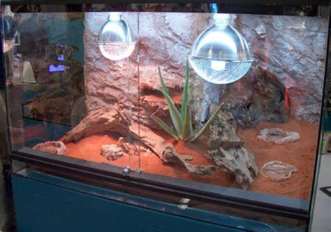 terrarium beleuchtung einbauen namiba terra uv beleuchtung im terrarium