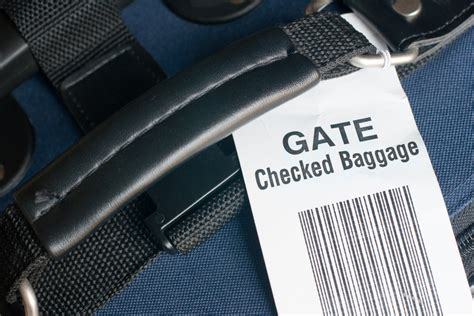 united airlines checked bag why pay united checked baggage fees when young passengers