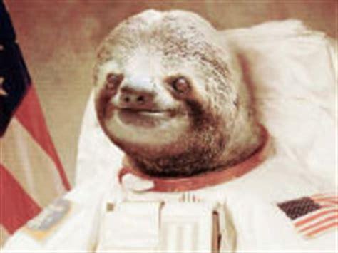 Astronaut Sloth Meme - astronaut sloth 4evermeme
