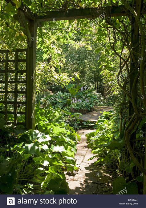 Sunlit Gardens sunlit garden and path viewed through wooden