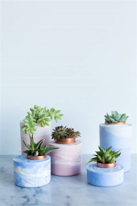 diy succulents 67 diy succulent planter ideas everyone can try morflora