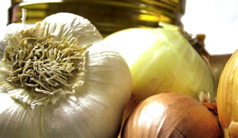 8 herbal home remedies for colds and flu herbal academy