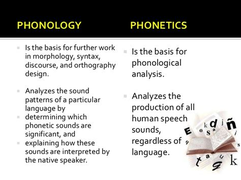 what does phonology mean phonology vs phonetics