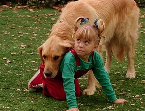 Comet Full House Tv S Cutest Pets Ever Zimbio