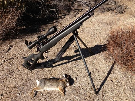 best outdoors blogs is airgun ethical the outdoors adventure