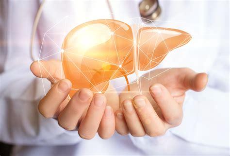 alimenti per il fegato ingrossato fegato ingrossato perch 232 ne possiamo soffrire e come curarlo