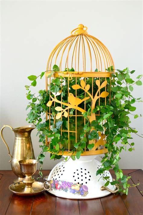 bird cage planters  fun  eye catching decor