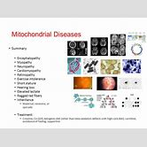 mitochondrial-disease