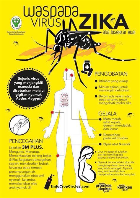 membuat poster tentang virus awas lewat nyamuk virus zika buat bayi keterbelakangan