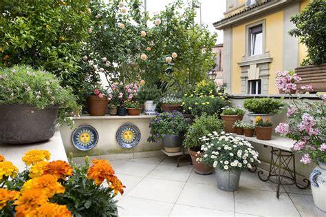 piante da veranda 4 idee per il design balcone