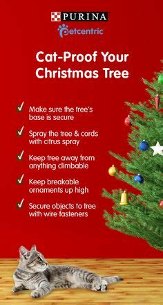 best to keep cats off the xmas tree 1000 images about cat proof decorations on decorations