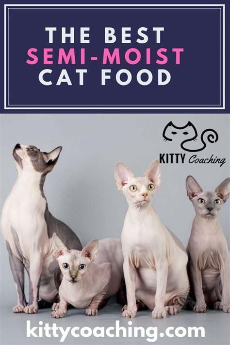 semi moist food the best semi moist cat food 2018