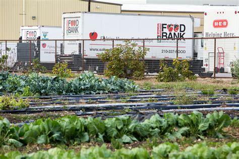 San Antonio Food Pantry by San Antonio Food Bank Announces Record Donation The
