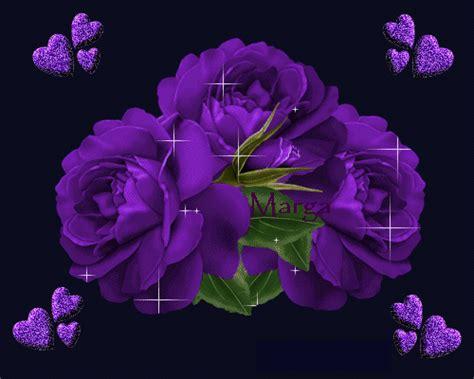 Imagenes De Rosas Lilas | imagenes de rosas lilas imagui