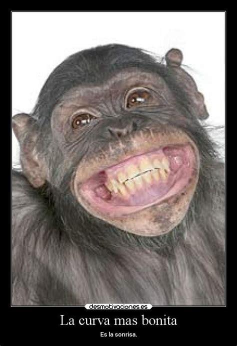 imagenes mas chistosas image gallery sonrisas graciosas