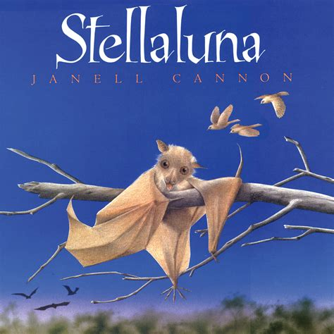 the someday birds books elementaryliterature stellaluna