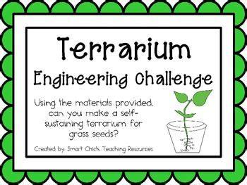 grass seed terrariums engineering challenge project great stem activity stem activities