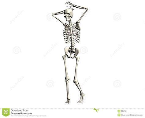 picture illustration skeleton illustration stock images image 2897824