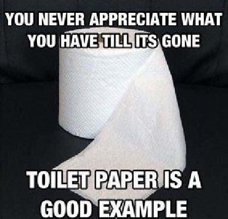 Toilet Paper Meme - wise messages to bring a smile to your day anric blatt
