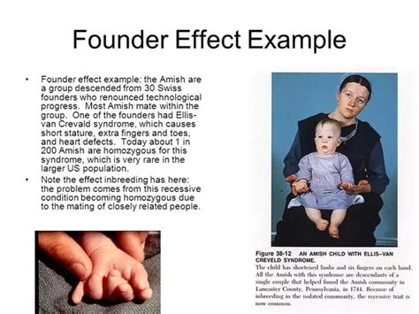 how do major demographic events like founder effects or