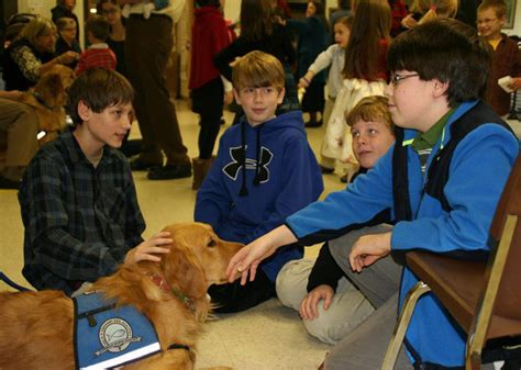 town school for dogs comfort dogs bring solace to a grieving newtown
