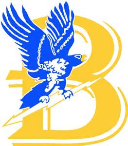 Bentley Falcons Hockey Bentley Falcons S Ncaa Hockey D1 Atlantic