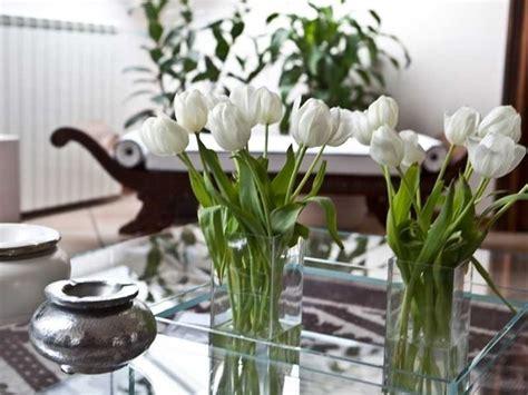 fiori per casa curare i fiori in casa piante appartamento come