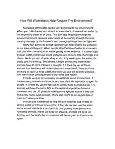 Grade Essay by Write Expository Essay