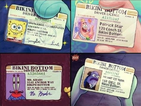 spongebob id card template 1000 images about on o