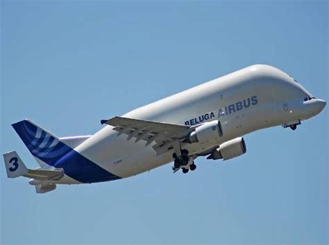 le pi禮 mondo interni airbus beluga il gigante cielo sar 224 ancora pi 249 grande