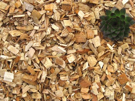 wood chips greendell landscape solutions