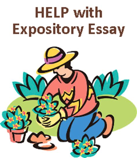 Expository Essay Topics Exles by How To Write A Definition Expository Essay